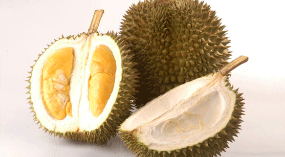 19_Durian